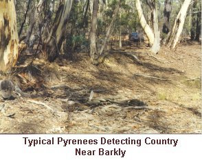 Pyrenees Detecting Country - Near Barkly - Click to enlarge